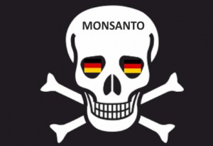 Monsanto12