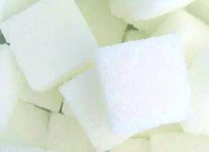 Why Poverty? Zuckerrohr, das Gold der Zukunft, denn Zuckerboom statt Ölkrise - doch zu welchem Preis? Spekulanten, Landraub, Menschenrechtsverletzungen, Genmanipulation