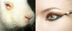 http://www.kosmetik-ohne-tierversuche.de/