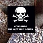 18 Millionen Amerikaner leiden an einer GVO- und Gluten-Intoleranz – 18 Million Americans Suffer from GMO and Gluten Intolerance