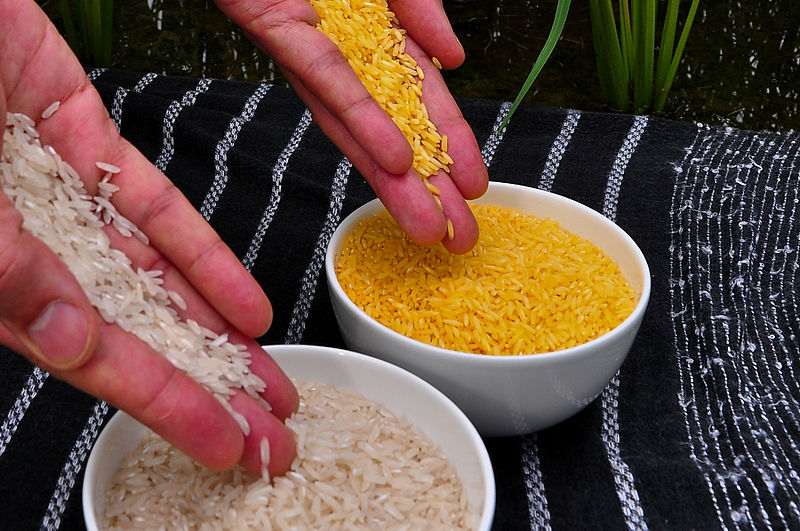 Golden_Rice