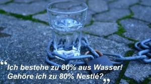 Nestlé erwirbt Wassernutzungsrechte und lässt Fabriken bewachen und einzäunen!