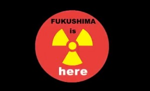 Fuku3-300x182