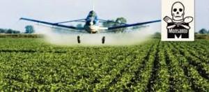 Vergiftetes Südamerika – Soja-Anbau für Europa.