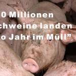 Schweine für den Müllcontainer!