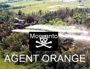 Agent Orange1