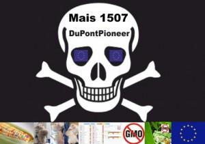 Monsanto14
