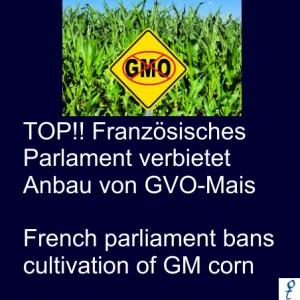Monsanto Frank