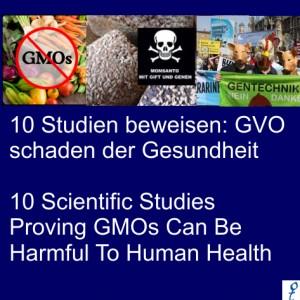 Monsanto10