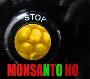 Monsanto6