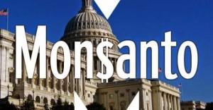 Wie Monsanto die Regierungen kontrolliert – How Monsanto Controls the Government