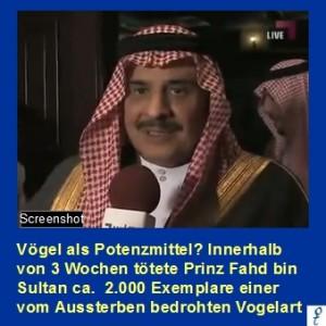 Sultan gg