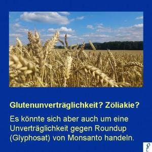 Gluten-Intoleranz? Vielleicht sind Sie intolerant gegen das Unkrautvernichtungsmittel von Monsanto