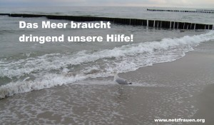 Das Meer braucht dringend unsere Hilfe!