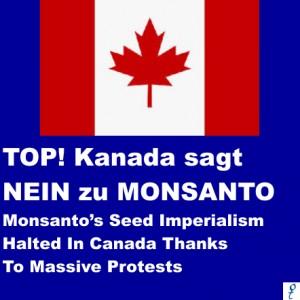 MonsantoKanada