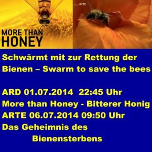 Bienen9