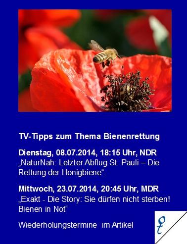 TVTipp