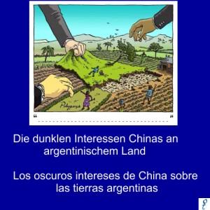 Netzfrauen-Argentinien-China