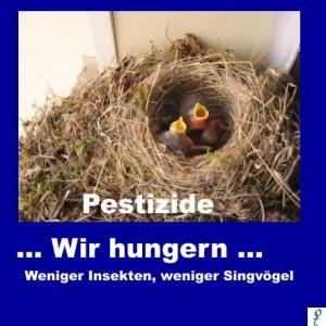Vögel Töten