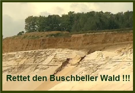 EILT! Sand-Abbau stoppen – Lebensraum Wald retten