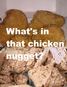 Chicken McNuggets – ist was? … und macht dumm