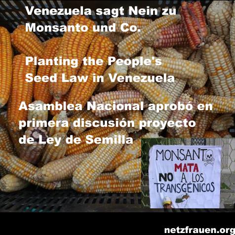 Netzfrauen Monsanto3
