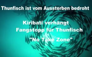 Thunfisch ist vom Aussterben bedroht – Kiribati verhängt Fangstopp für Thunfisch
