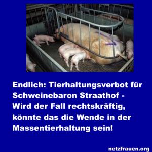 Endlich -Tierhaltungsverbot für Schweinebaron Straathof – Wird der Fall rechtskräftig, könnte das die Wende in der Massentierhaltung sein
