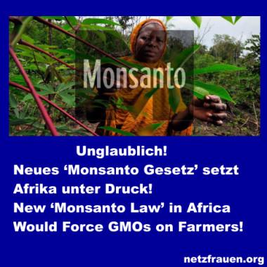 Monsanto-Gesetz