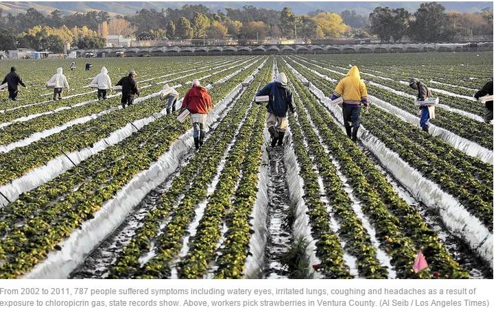 Pestizide Kalifornien 1