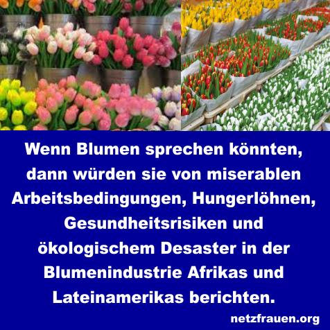 Schattenseite der Tulpen: Monokulturen, Ausbeutung und Pestizide