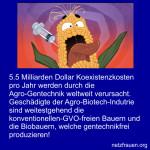 5.5 Milliarden Dollar Koexistenzkosten pro Jahr durch die Agro-Gentechnik weltweit verursacht. Zeche bezahlt Biobauer!