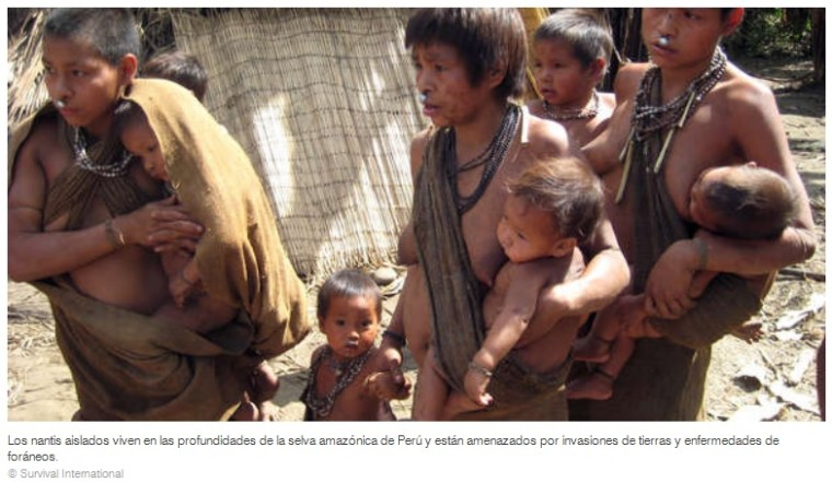 Epidemie tötet Kinder von vor kurzem kontaktiertem Stamm – Epidemia mata a niños de tribu recién contactada