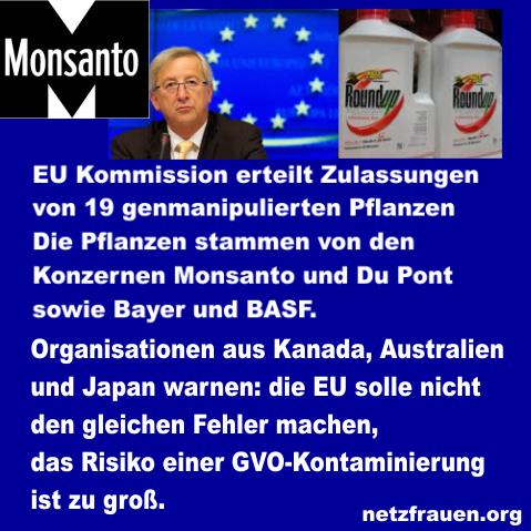 Kanada, Australien und Japan warnen EU – Lernt aus unseren Fehlern! – GMO Contamination Risk is Too High, Say Groups from Canada, Australia and Japan