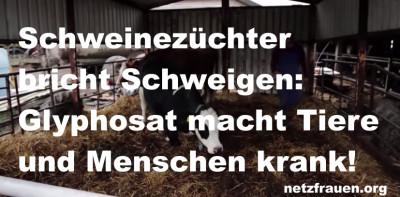 Schweinezüchter bricht Schweigen: Glyphosat macht Tiere und Menschen krank!