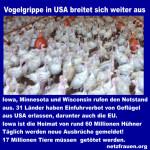 Vogelgrippe USA – 17 Millionen Tiere betroffen – Genmanipulierte Hühner auf unseren Tellern?