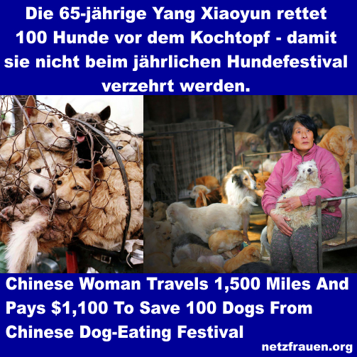 #Stop Yulin – 65-jährige Yang Xiaoyun rettet mit ihren Ersparnissen 100 Hunde – Woman travels 1,500 miles to save 100 dogs from slaughter at Yulin Dog Meat Festival