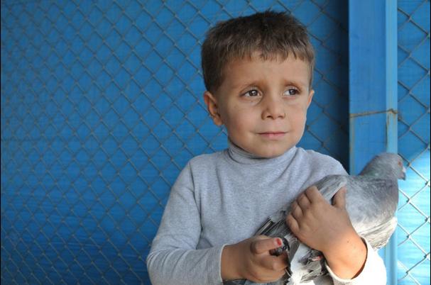 Menschenrechte – einem Kind erklärt