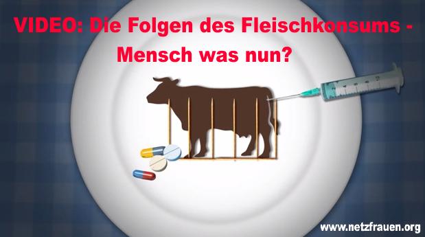 VIDEO: Die Folgen des Fleischkonsums