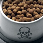 Neue Studien - Glyphosat ist erbgutschädigend und wurde auch in Hunde- und Katzenfutter gefunden! Glyphosate is Genotoxic to Human White Blood Cells at Low Concentrations - All tested cat and dog foods contained detectable glyphosate!