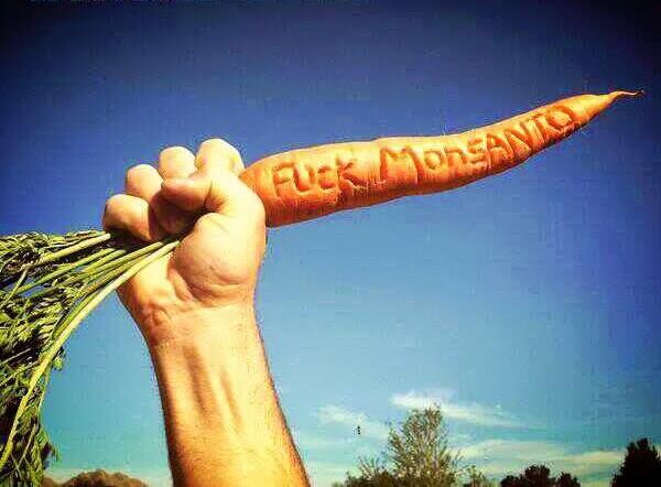 Netzfrauen Monsanto