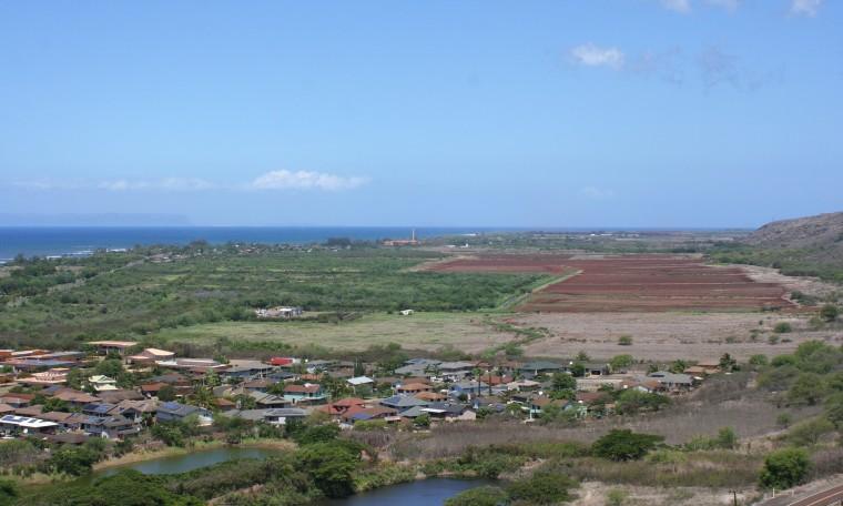 Waimea und die GMO-Felder: die beiden Gebäude mit den orangefarbenen Dächern links gehören zur Middle School. Rechts davon liegt das Krankenhaus.