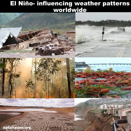 Elninio6