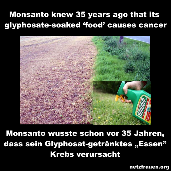 Monsanto wusste schon vor 35 Jahren…Monsanto knew 35 years ago that its glyphosate-soaked 'food' causes cancer