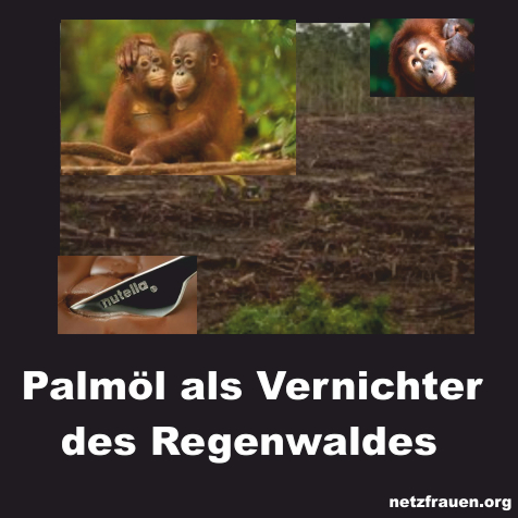 Palmöl – vom Urwald in die Schokocreme – Say No To Palm Oil