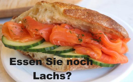 Lachs4