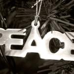 Frohe Weihnachten – Wir wünschen allen eine bessere Welt