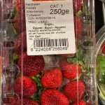 MADE FOR GERMANY – Der bittere Geschmack von unserem Obst