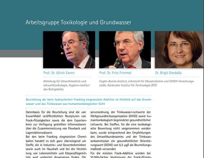 Screenshot http://dialog-erdgasundfrac.de/