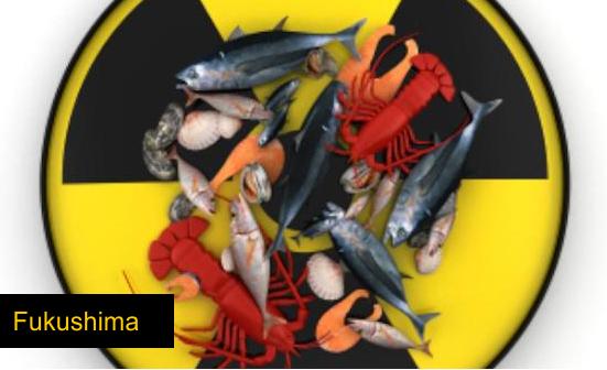 Fukushima8